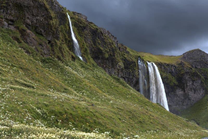Seljalandsfoss en été, Islande image libre de droits