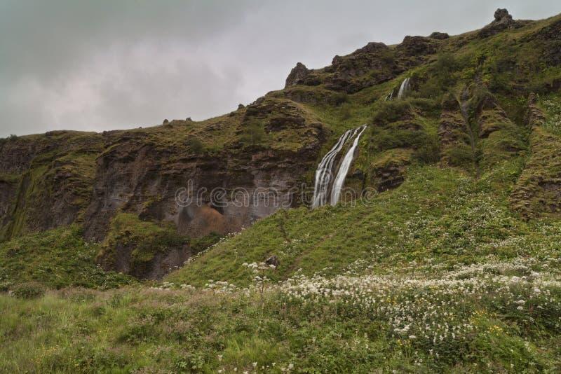 Seljalandsfoss en été, Islande image stock