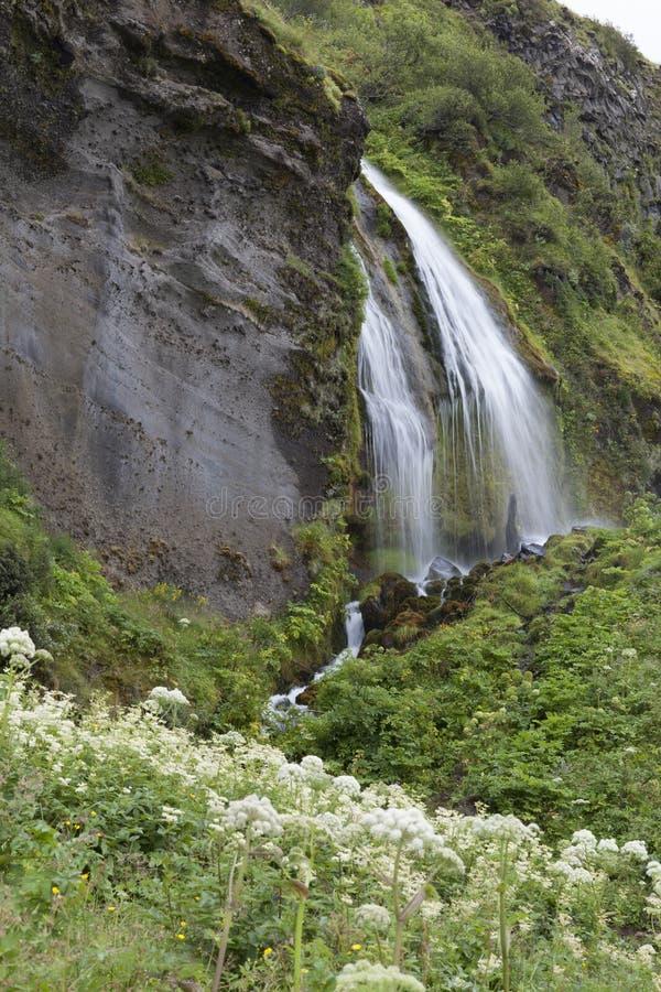 Seljalandsfoss en été, Islande photo libre de droits