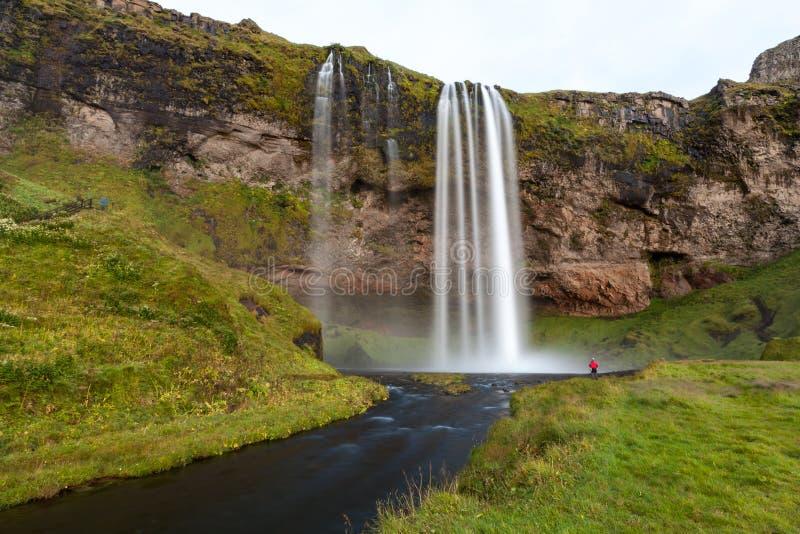 Seljalandsfoss siklawa po zmierzchu, półudniowy-zachód Iceland zdjęcie stock