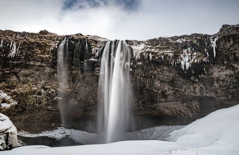 Seljalandsfoss vattenfall royaltyfria bilder