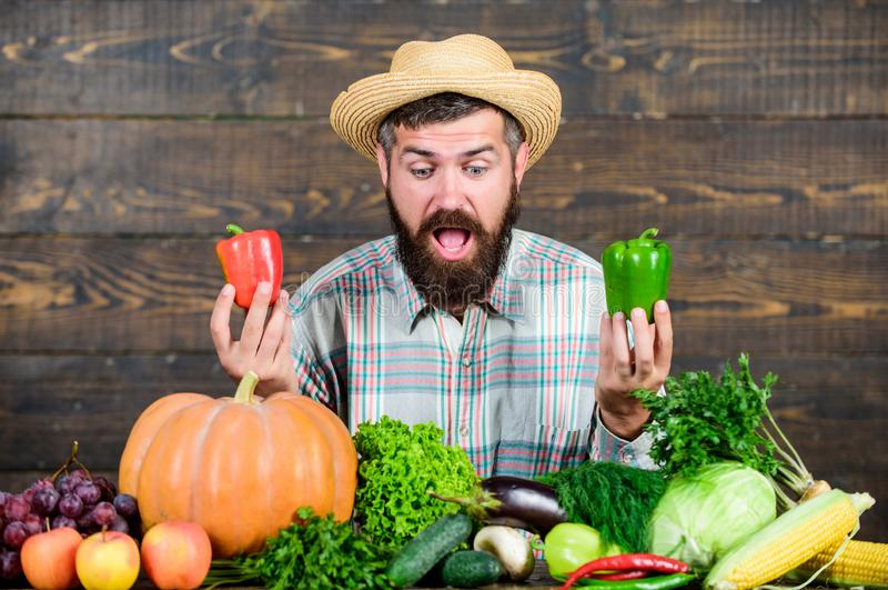Sell vegetables. Grocery store. Buy vegetables local farm. Homegrown harvest concept. Typical farmer guy. Farm market stock photo