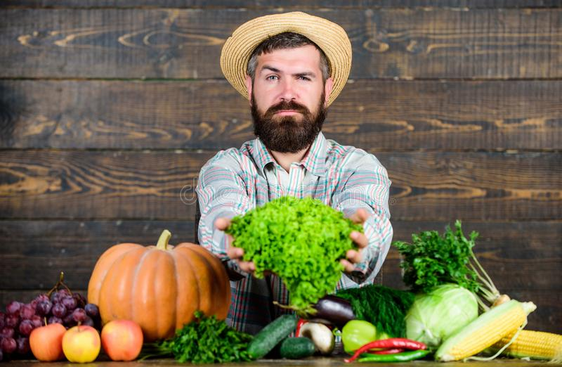 Sell vegetables. Man mature bearded farmer hold vegetables wooden background. Local market. Locally grown crops concept. Buy vegetables local farm. Typical royalty free stock photo