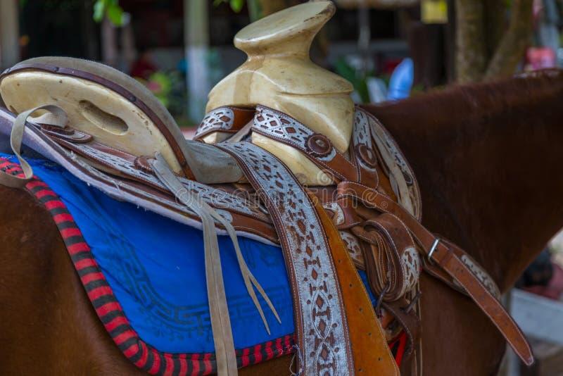 Sella messicana fotografia stock libera da diritti