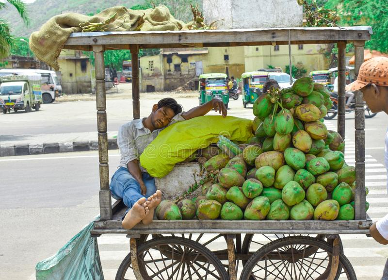The seller of coconut in the hot summer is resting on his cart. In Jaipur, India royalty free stock photos