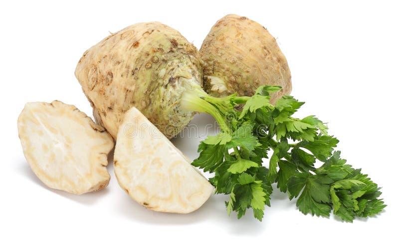 Selleriewurzel mit dem Blatt lokalisiert auf weißem Hintergrund Sellerie getrennt auf Weiß Gesunde Nahrung lizenzfreie stockfotos