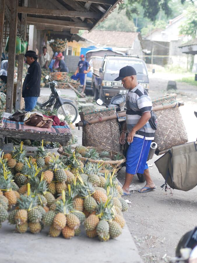 Sellers pineapple in Bedali traditional market at Blitar, Indonesia. Bedali, Blitar/Indonesia-04282019: Sellers pineapple in Bedali traditional market at Blitar stock image