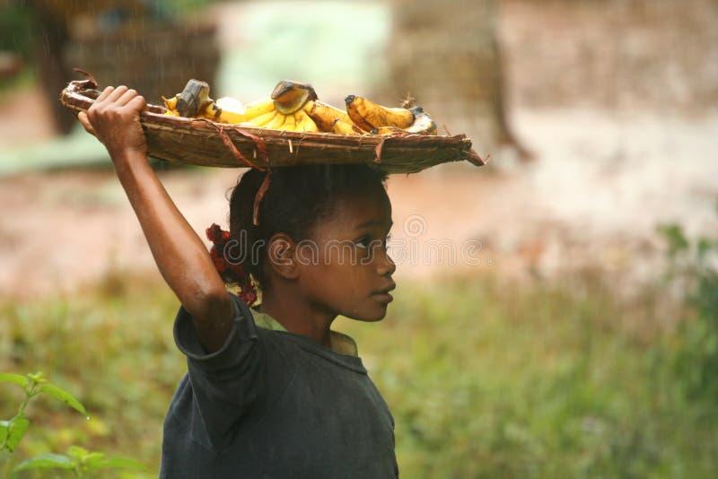 Selling bananas in the rain stock photo
