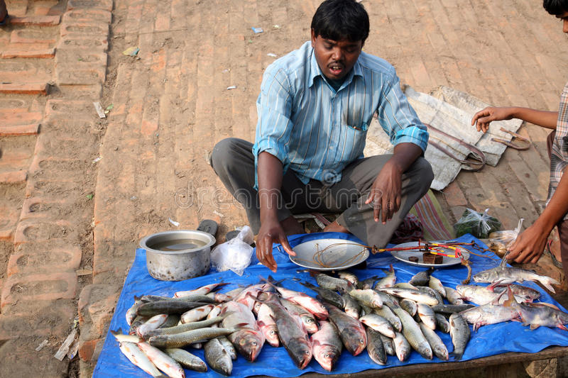 Download Selling A Fish On Fish Market Editorial Stock Image - Image: 21437914
