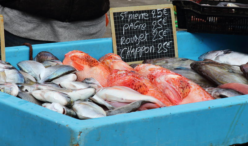 Selling fish in Marseille harbour, France royalty free stock photography