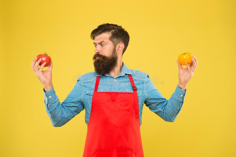 Selling homegrown ripe vegetables. Organic crops. Tomato diet. Salesman with tomatoes. Bearded man hold tomato in hands stock photos