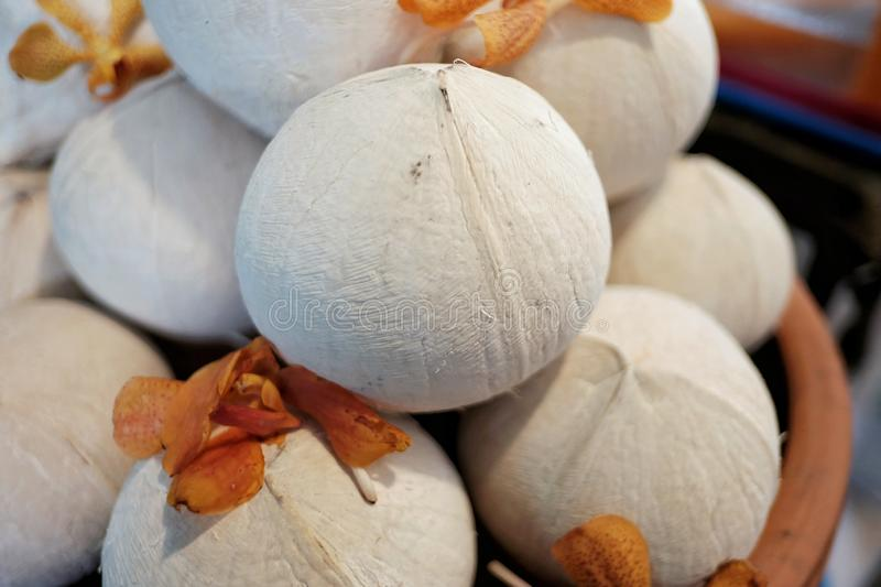 A pile of fresh coconuts in a brown box stock photo