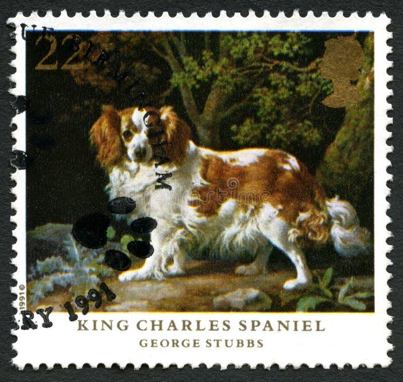 Sello BRITÁNICO de rey Charles Spaniel fotos de archivo