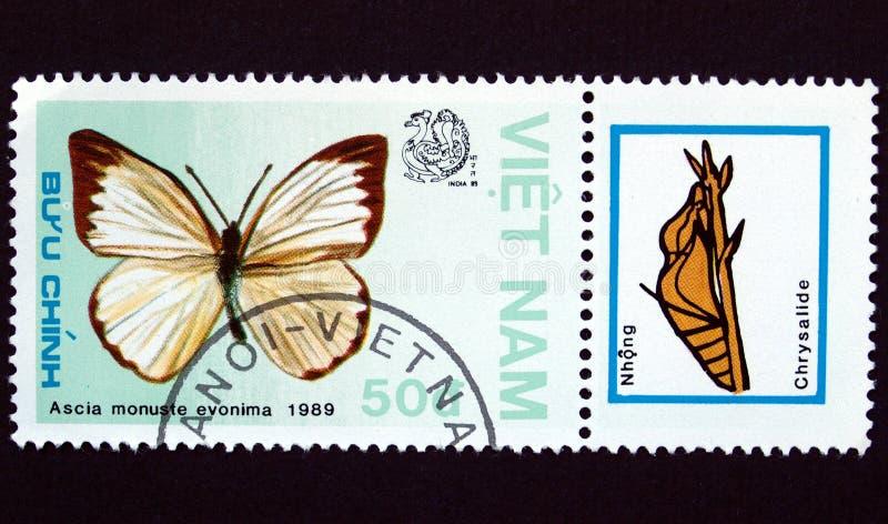 Sello con la mariposa fotos de archivo libres de regalías