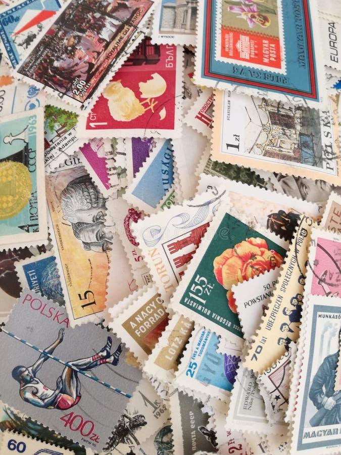 sellos fotografía de archivo libre de regalías