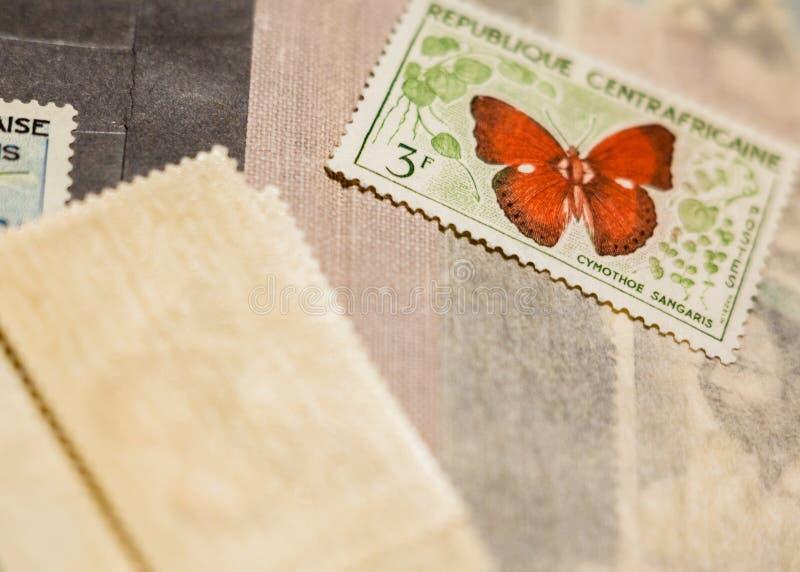 Selo com a borboleta entre outros selos foto de stock royalty free