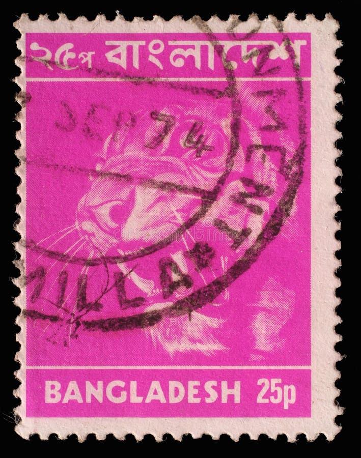 Selo impresso em Bangladesh, mostras um tigre fotos de stock