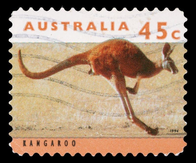 Selo impresso por Austrália, canguru das mostras fotos de stock