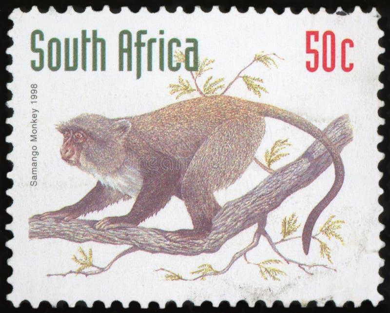 Selo postal - África do Sul foto de stock