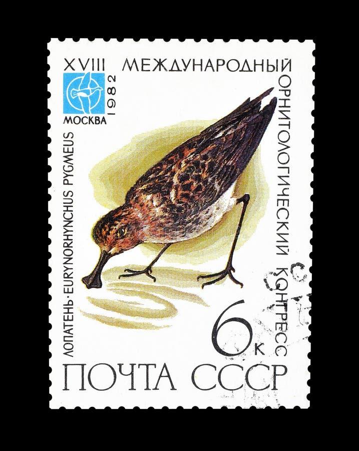 Selo postal cancelado impresso por União Soviética fotografia de stock royalty free