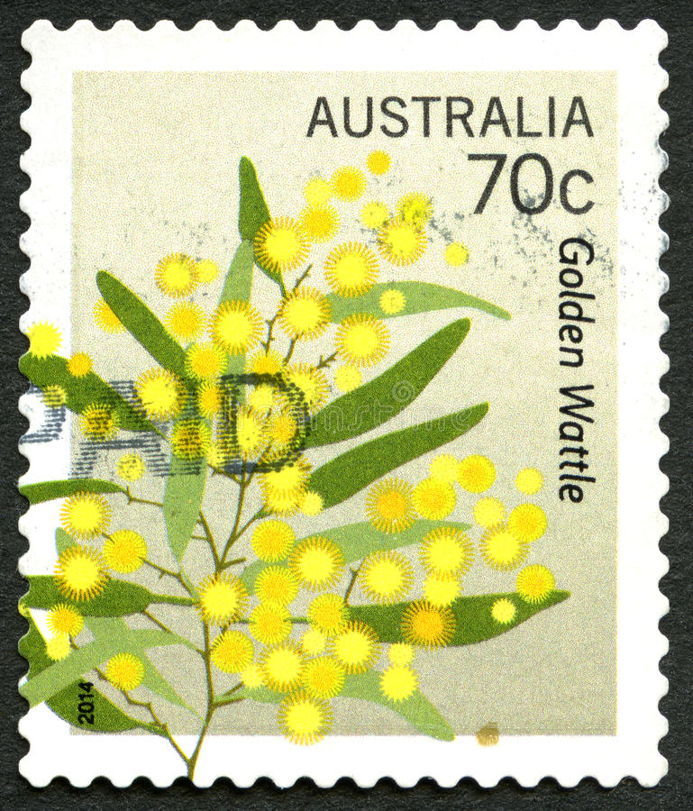Selo postal do australiano da árvore do Wattle dourado fotos de stock