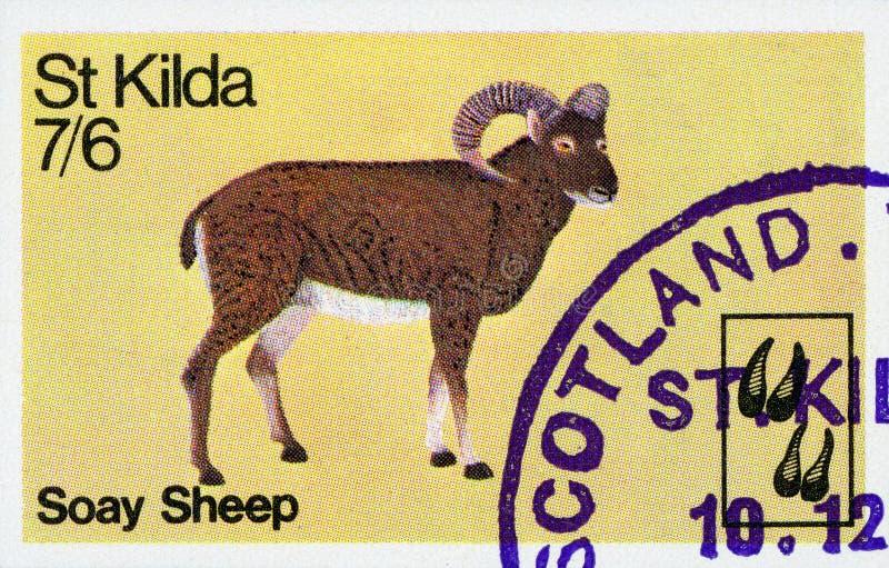 Selo postal - Escócia fotografia de stock