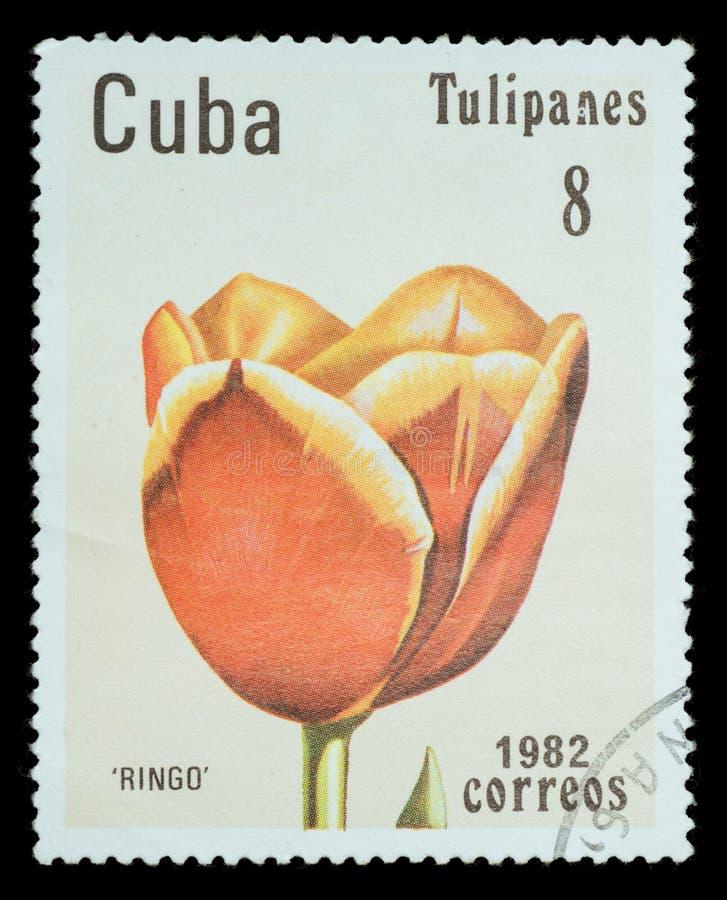 Selo postal isolado imagem de stock