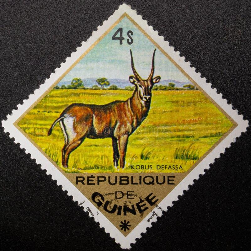Selo postal 1975 Republic of Guinea Animais selvagens imagens de stock royalty free