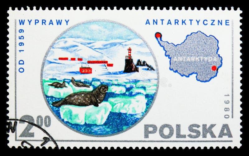 Selos, a Antártica, serie científico polonês da expedição, cerca de 1980 fotos de stock