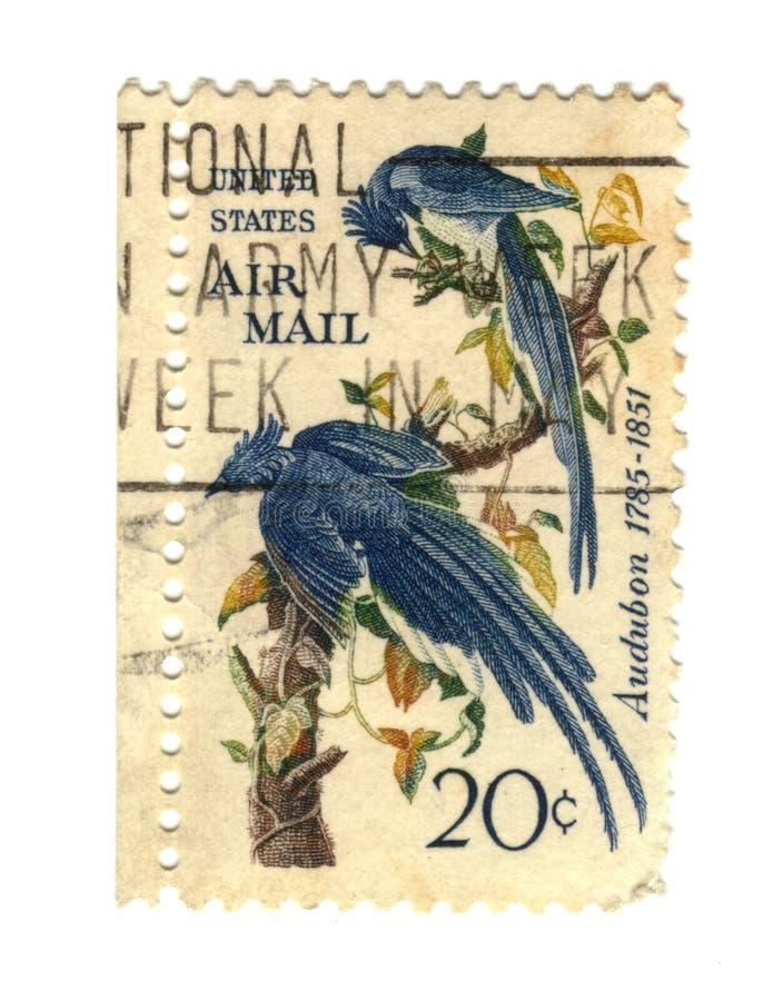 Selos de porte postal velhos dos EUA com dois pássaros imagem de stock royalty free