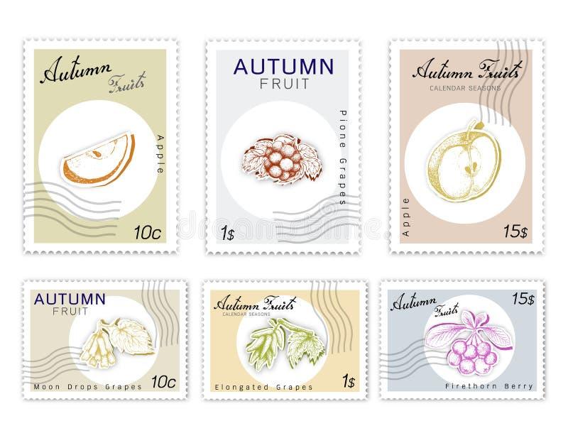 Selos do cargo ajustados de Autumn Fruits com arte do corte do papel ilustração do vetor