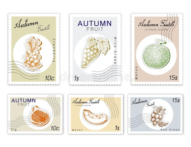 Selos do cargo ajustados de Autumn Fruits com arte do corte do papel ilustração royalty free