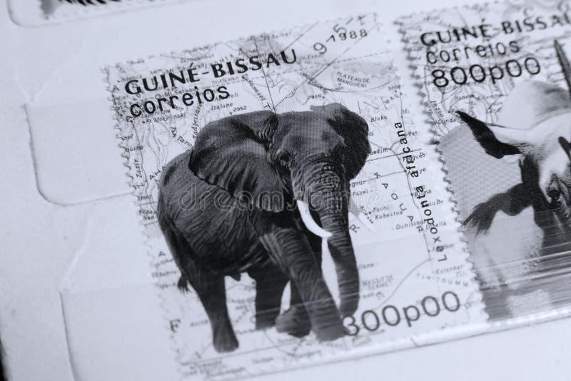 Selos postais, animais selvagens de Guine-Bissau, elefante foto de stock royalty free