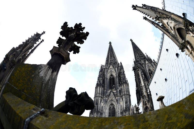 Seltene Ansicht des Köln-Kathedralendachs lizenzfreies stockfoto