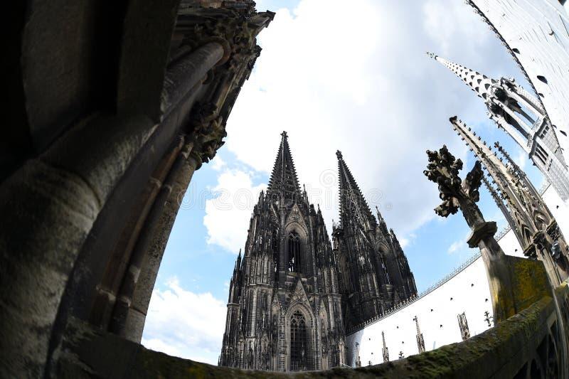 Seltene Ansicht des Köln-Kathedralendachs lizenzfreie stockfotos