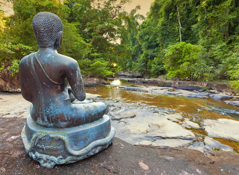 Selva Buddha fotos de archivo libres de regalías