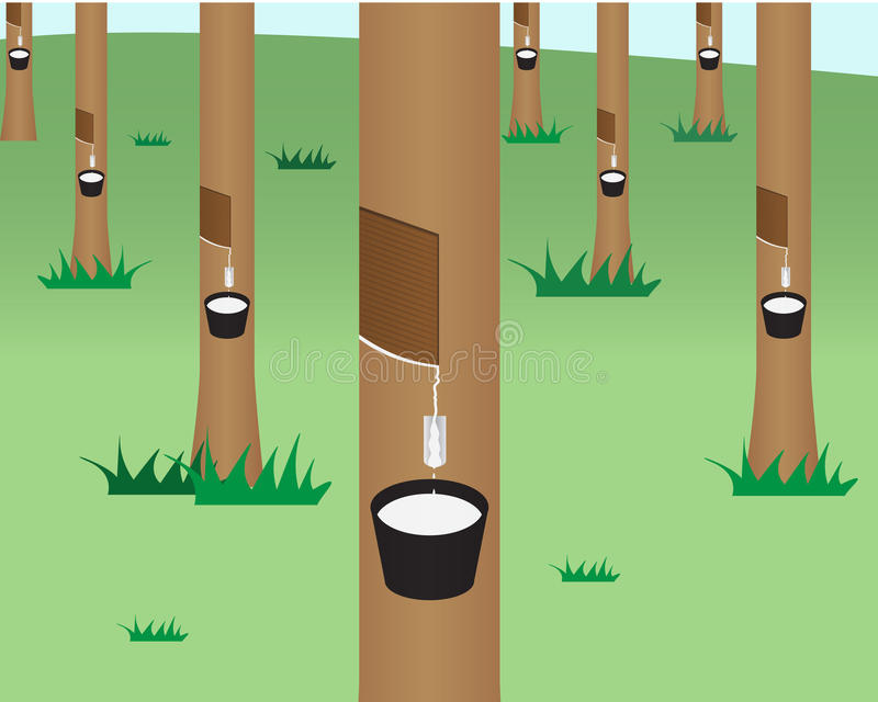 Selva da árvore da borracha no estilo liso ilustração do vetor