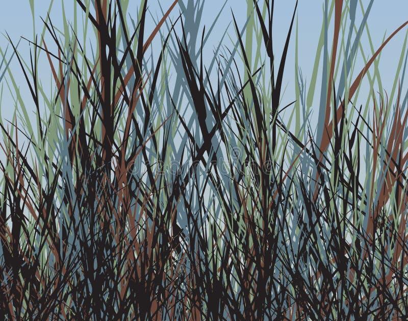 Selva da grama ilustração do vetor