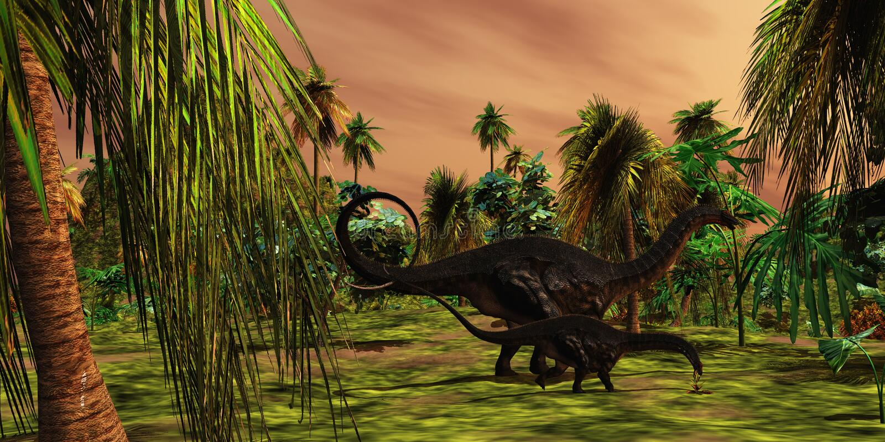 Selva de Apatasaurus ilustração do vetor