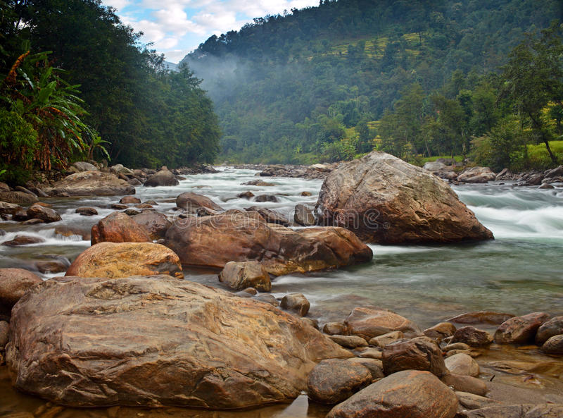 Selva de Nepal imagens de stock