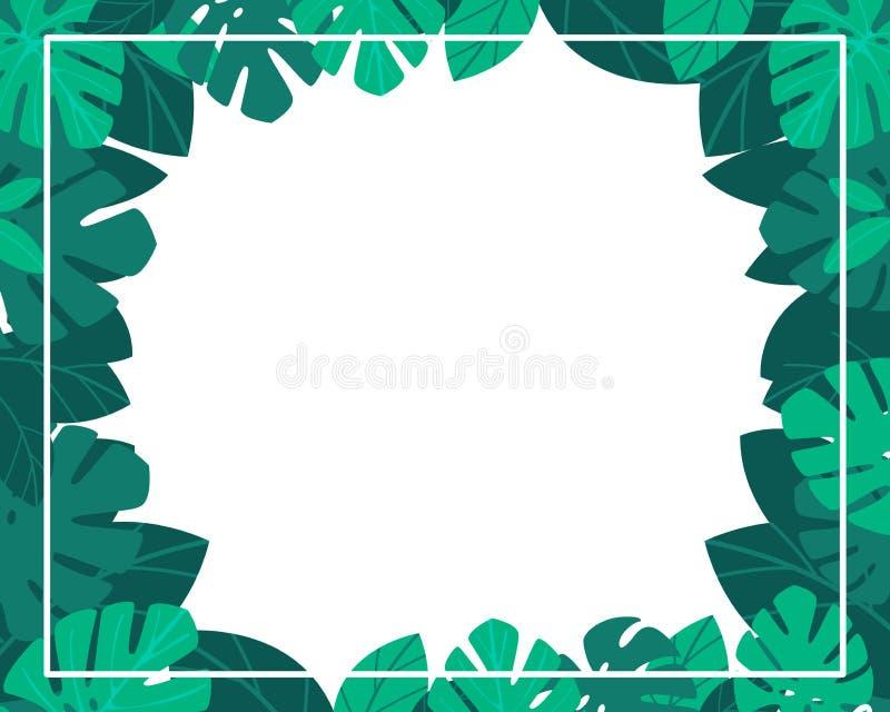 A selva deixa o quadro no fundo branco Projeto verde botânico do verão Ilustra??o do vetor, desenhos animados lisos ilustração royalty free