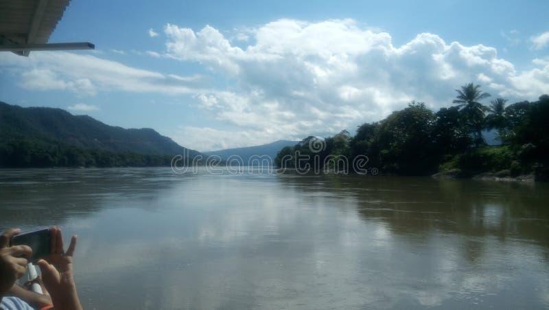 Selva/flod för Rio de Janeiroen-la i djungeln royaltyfri bild
