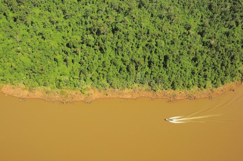 Selva pelo rio de Iguazu imagem de stock
