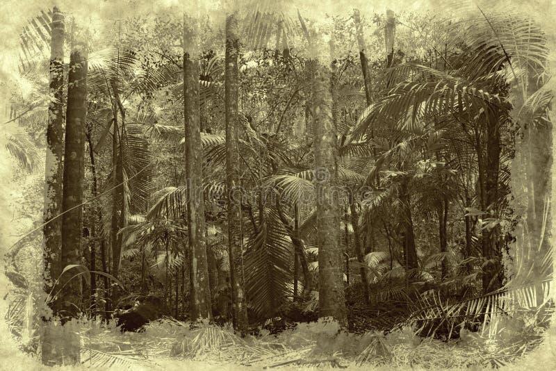 Selva tropical libre illustration