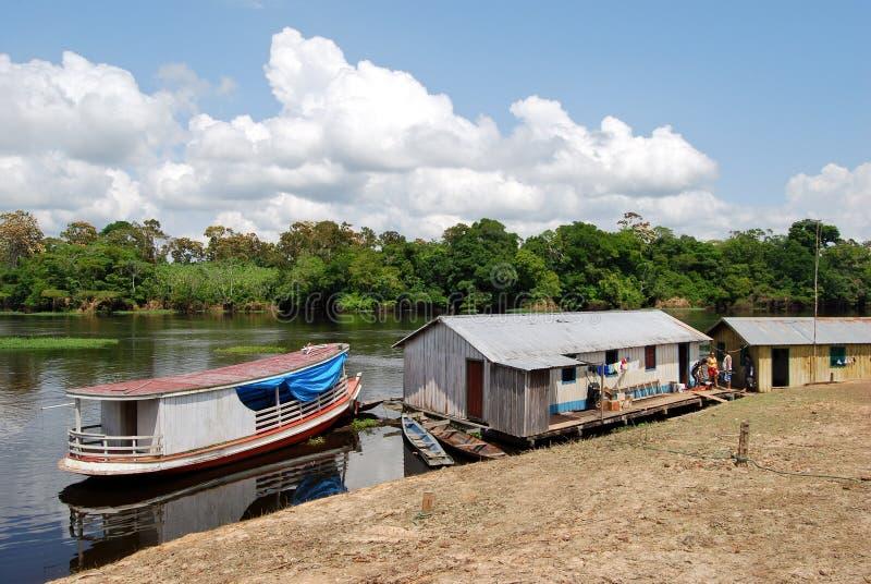Selva tropical del Amazonas: Expedición en barco a lo largo del río Amazonas cerca de Manaus, el Brasil Suramérica fotos de archivo