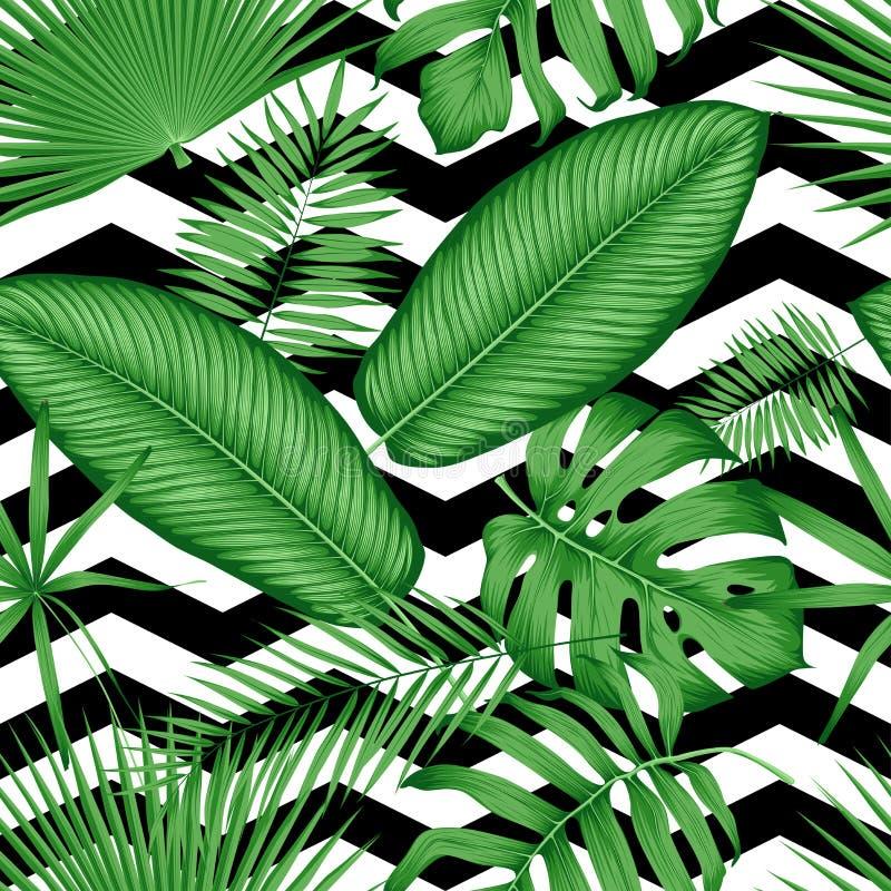 A selva tropical do teste padrão floral sem emenda bonito do vetor sae em um fundo geométrico ilustração do vetor