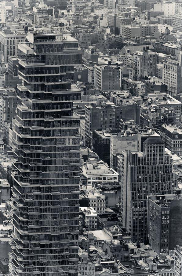 Selva urbana imágenes de archivo libres de regalías