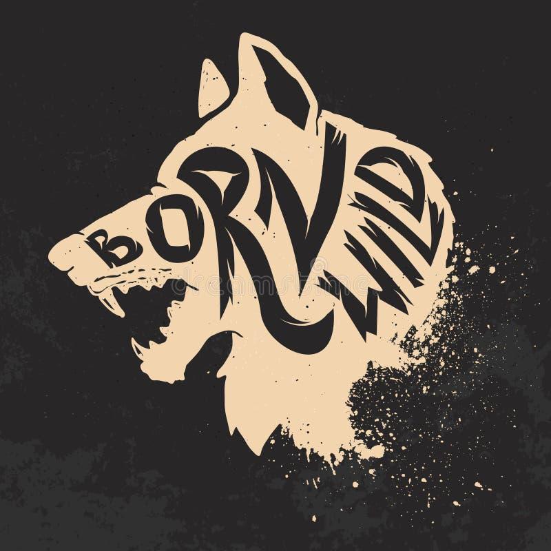 Selvagem nascido Cabeça do lobo no fundo do grunge ilustração royalty free