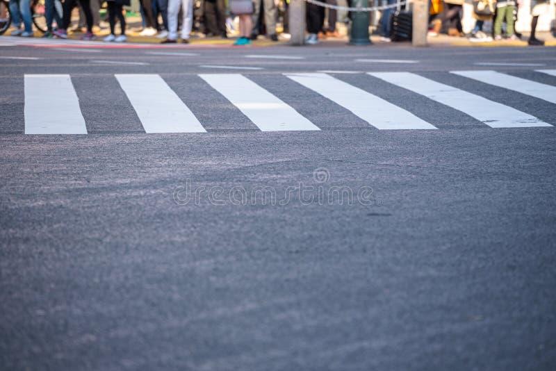 Semaforo aspettante di molta gente agli attraversamenti di Shibuya fotografie stock libere da diritti