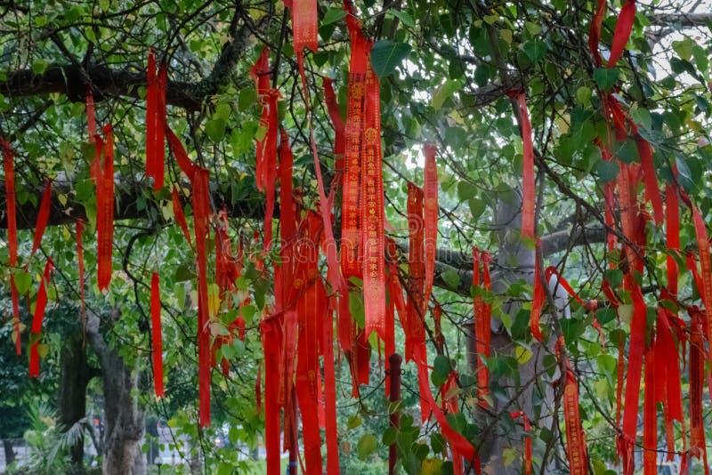 Semarang, Indonesien - 3. Dezember 2017: Der Bodhi-Baum beim Vihara Buddhagaya Watugong Vihara Buddhagaya ist buddhistischer Temp stockbild